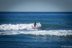 surfing swamis w (1 of 61)