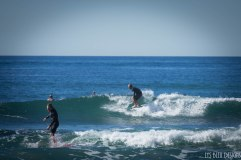 surfing swamis w (20 of 61)