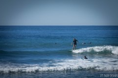 surfing swamis w (42 of 61)