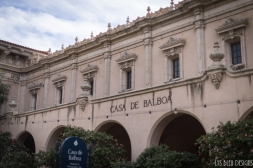 balboa park (19 of 108)