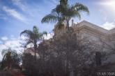 balboa park (2 of 108)