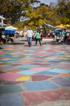 balboa park (25 of 108)
