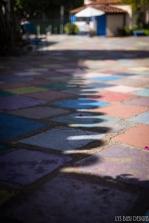 balboa park (29 of 108)