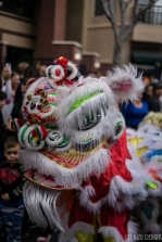 chinese new year w (10 of 30)