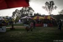 tet festival w (28 of 33)