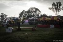 tet festival w (29 of 33)