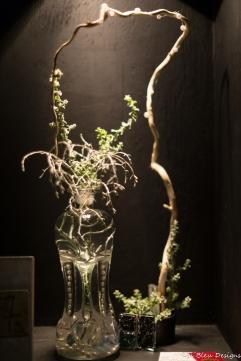 coronado flower show w (106 of 240)