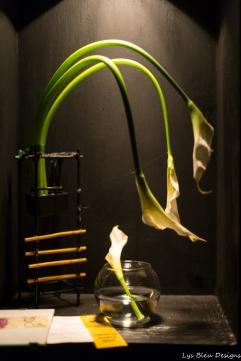 coronado flower show w (107 of 240)