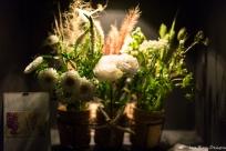 coronado flower show w (111 of 240)
