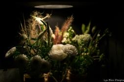 coronado flower show w (116 of 240)