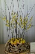 coronado flower show w (143 of 240)