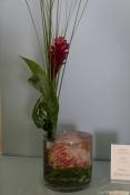 coronado flower show w (155 of 240)