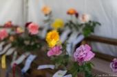 coronado flower show w (158 of 240)