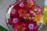 coronado flower show w (181 of 240)