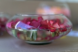 coronado flower show w (184 of 240)