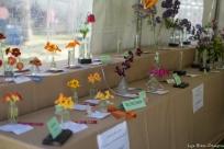coronado flower show w (24 of 240)