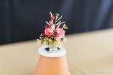 coronado flower show w (44 of 240)