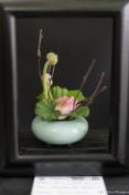 coronado flower show w (51 of 240)