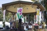 coronado flower show w (9 of 240)